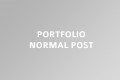 portfolio-normal-post