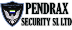 Pendrax Security System Logo